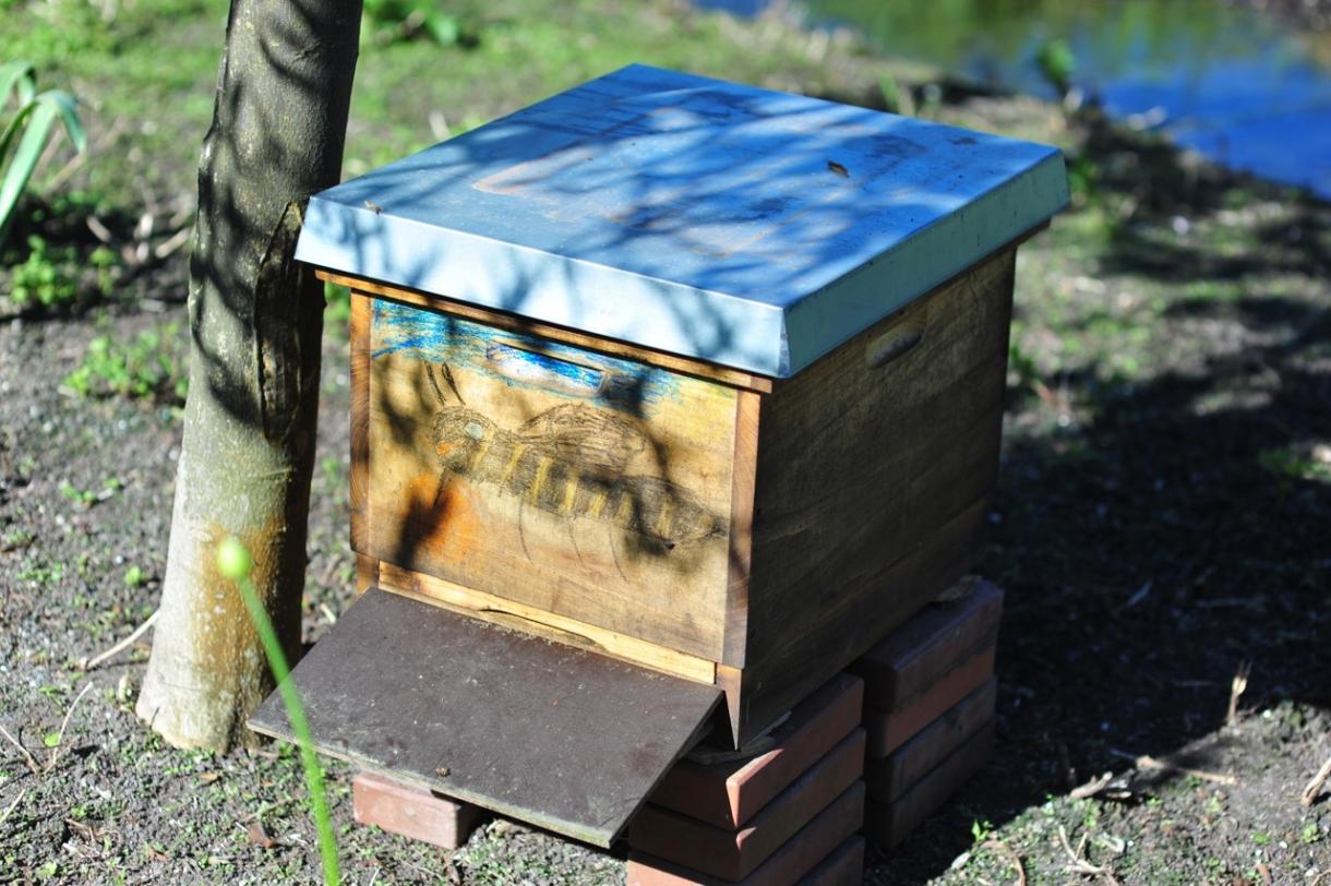 Ein Bienenstock Für Den Grafgarten Graf Garten